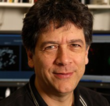 Headshot of Sandy Simon, Ph.D.